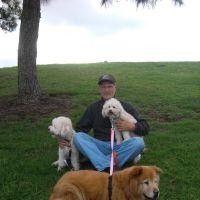 Dave's dog day care