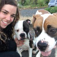 Lorraine's dog day care