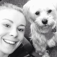 Chelsey's dog boarding