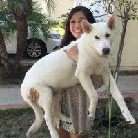 dog walker Cynthia