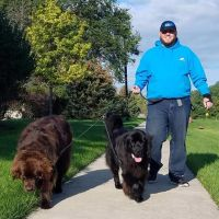 dog walker Randall