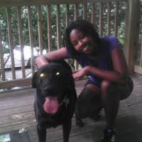 Delayni's dog day care