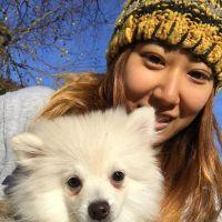 Xu's dog day care