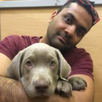 pet sitter Rakesh
