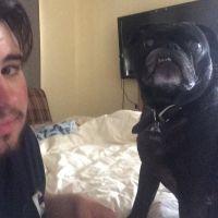 Ronan's dog day care