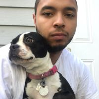 dog walker Bryan
