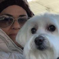 Iris's dog boarding