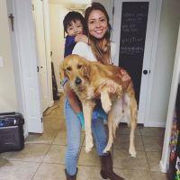 Bri's dog day care