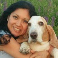 Jimena's dog day care