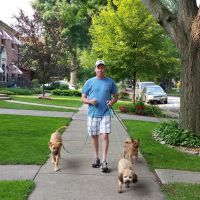 dog walker Stephen