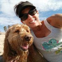Taura's dog day care