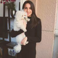 Aparajita's dog boarding