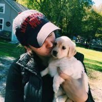 Annalisa's dog day care