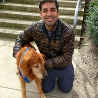 Rajat's dog day care