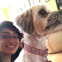 Midori's dog day care