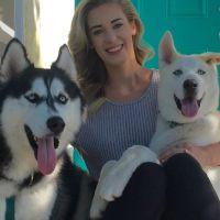 Rhiannon's dog day care