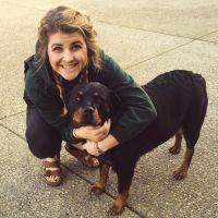 Carli's dog boarding