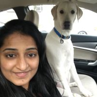 Sree's dog day care