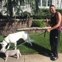 dog walker Rogers