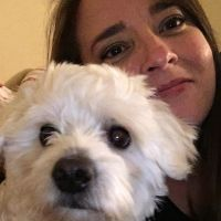 Dorothy's dog day care