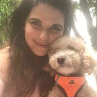 Miriam's dog day care