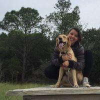 Amerissa's dog boarding