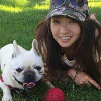 Yukino's dog day care