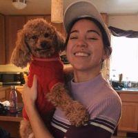 Cheryl's dog boarding
