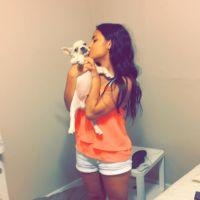 Belen's dog day care