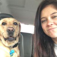 Kari's dog boarding