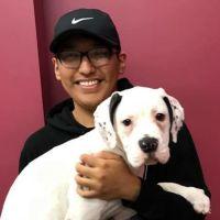 Fernando's dog day care