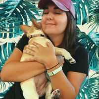 pet sitter Lauren Anne