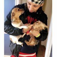 Renz's dog day care