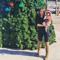Alisha's dog day care