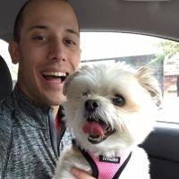 Aaron's dog boarding