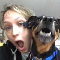 Sheri-Lyn's dog boarding