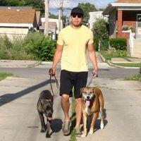 dog walker Etienne