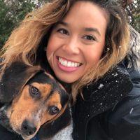 Chelsea's dog boarding
