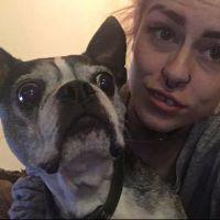 Charlee's dog boarding