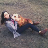 Cerina's dog day care