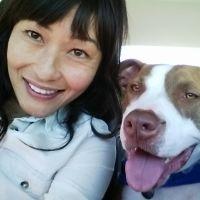 Chau's dog boarding
