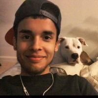 Antonio's dog day care