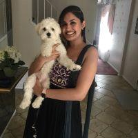 Ajila's dog day care
