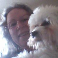 Veneta's dog day care