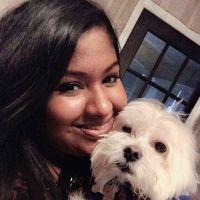 Jenny's dog day care