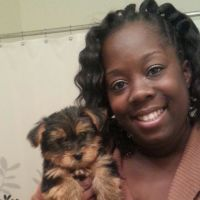 Quansha's dog boarding