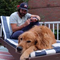Bryon's dog boarding