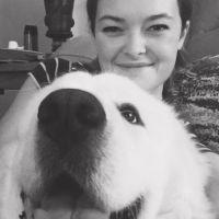 Frankie's dog day care