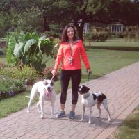 dog walker Brittany