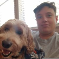 Nohemi's dog day care